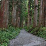 八百万 自然の中の神々からのメッセージ 天岩屋神話の主役たち 長野 戸隠神社