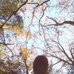 人間界のくせ者、価値観という『ものさし』 森と魂のセラピスト 飯田みゆきコラム No.2