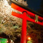 日本の神様カードセルフリーディング講座