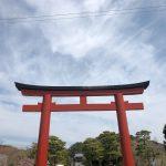 八百万(ヤオヨロズ) 鶴岡八幡宮 鎌倉 そこはどこへ通じる?