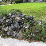八百万(ヤオヨロズ) 神の島 祈りの島 天と地をつなぐ地味な場所  沖縄・久高島 Vol.4