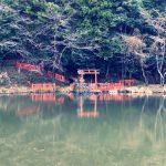 八百万(ヤオヨロズ)池に住まう龍神!その正体は八大龍王辨財天大神 奈良 日本最古 龍神神社 そして、大神神社で熊野権現からのメッセージ! その2