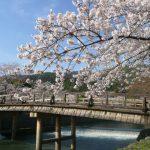霊なる京都 現なる東京 それぞれの役割!