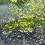(祈り)白龍再び!? 東のレイライン  聖山 大山 神奈川 ・大山阿夫利神社 大山寺