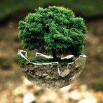 菩提樹の樹のしたで! ひとが地球でやることは!?